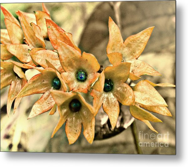 Star Fade Diffused Metal Print