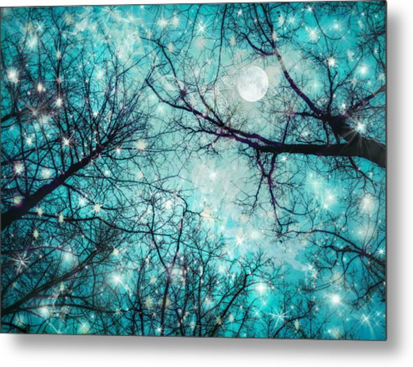Star Night Metal Print by William Schmid