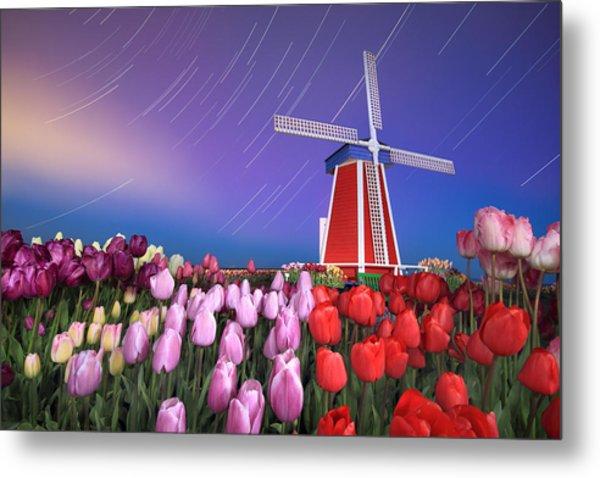 Star Trails Windmill And Tulips Metal Print