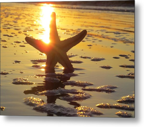 Starfish And Bubbles Metal Print