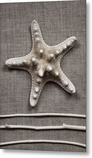 Starfish And Sticks Metal Print