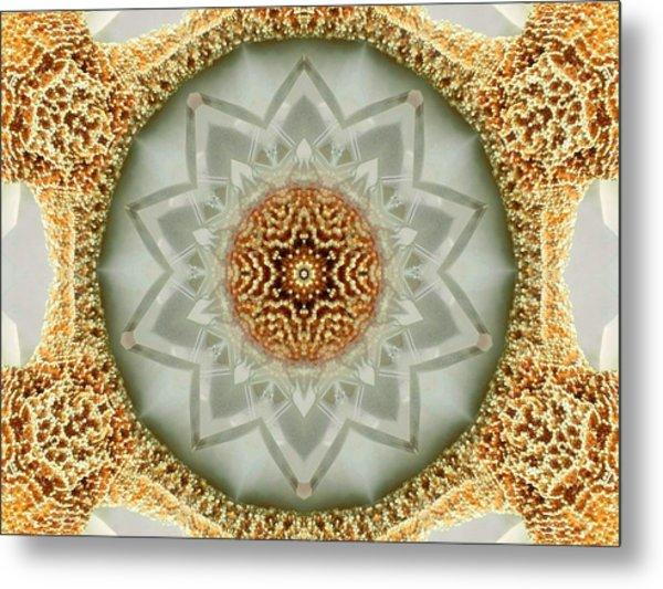 Starfish Crystal Mandala Metal Print