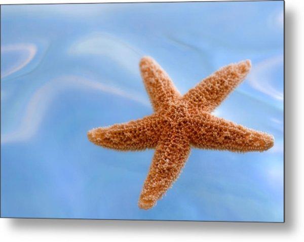Starfish On Blue Water Metal Print