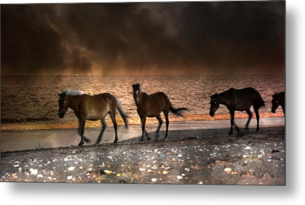 Starry Night Beach Horses Metal Print