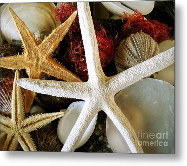 Stars Of The Sea Metal Print