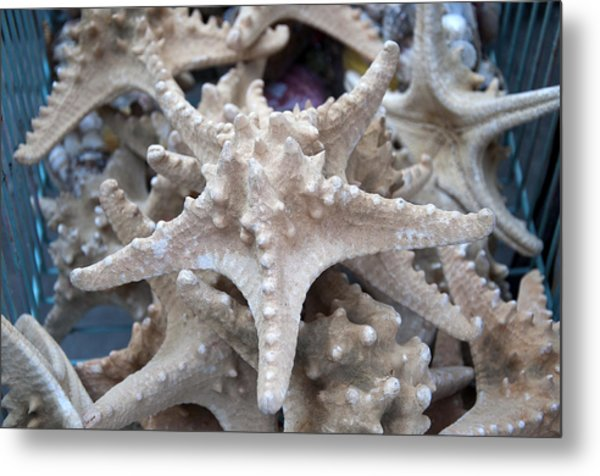 Stars Of The Timeless Sea Metal Print