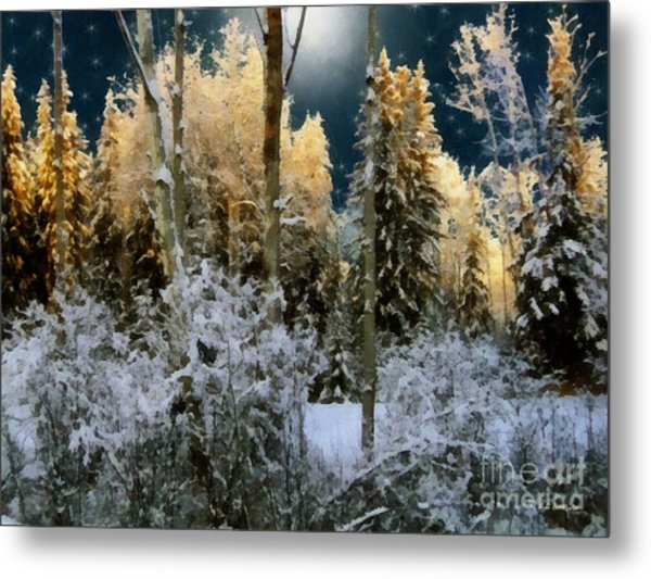 Starshine On A Snowy Wood Metal Print