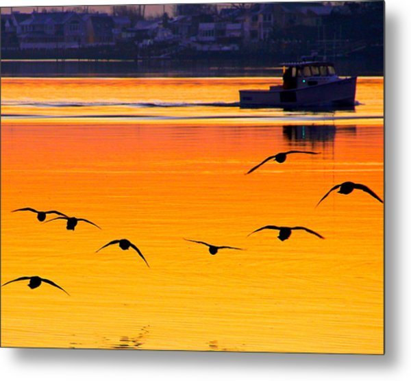 Start Of A Day Metal Print