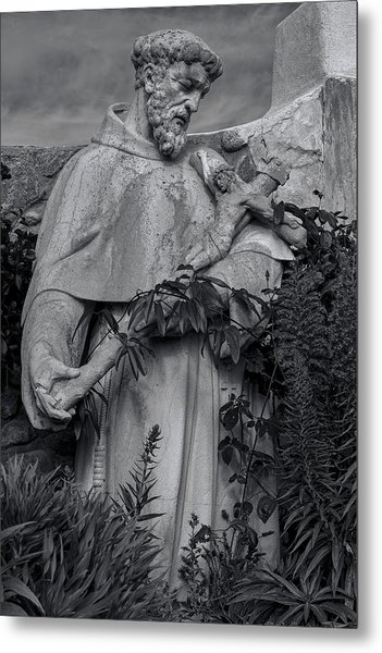 Stature Of Father Junepero Serra  In Black And White Metal Print