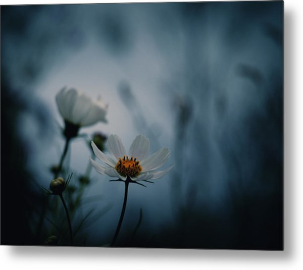 Stay With Me A While Metal Print