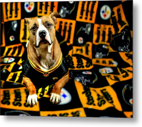 Pitbull Rescue Dog Football Fanatic Metal Print
