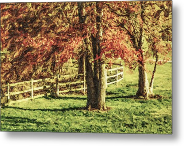 Stevens Lake Park Series 04 Metal Print by David Allen Pierson