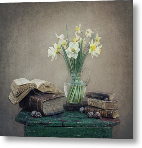 Still Life With Daffodils, Old Books And Snails Metal Print