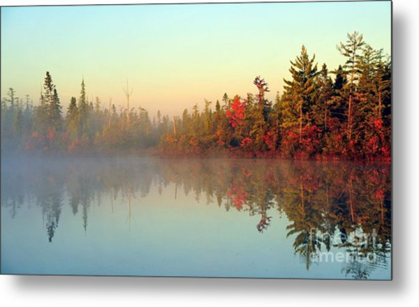 Still Water Marsh Metal Print