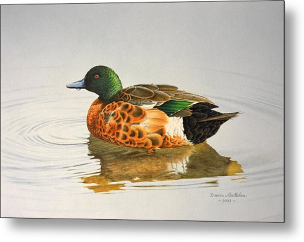 Still Waters - Chestnut Teal Metal Print