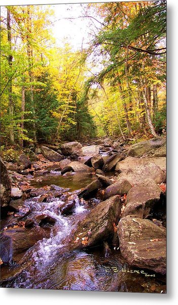 Stone Brook I Metal Print