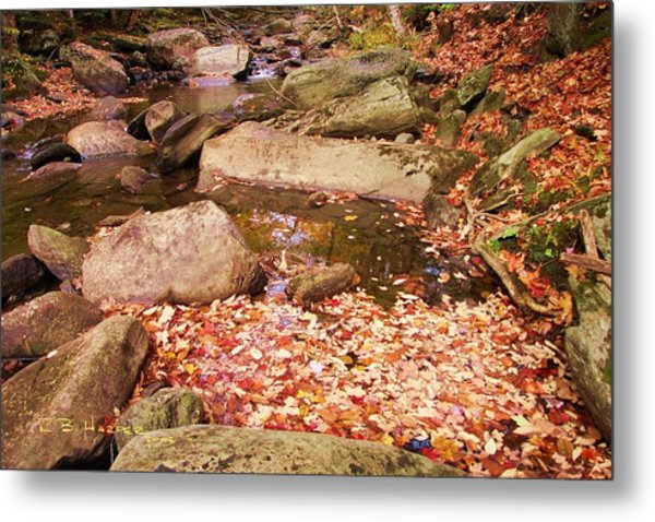 Stone Brook II Metal Print