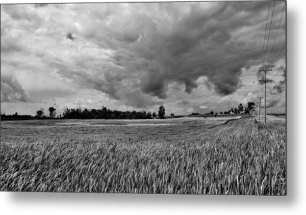 Storm Field - Canada Metal Print