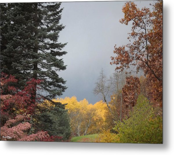 Storm In Hidden Gardens Metal Print