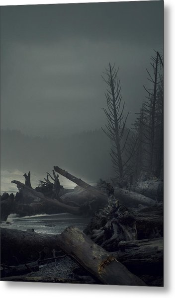 Storm Aftermath Metal Print