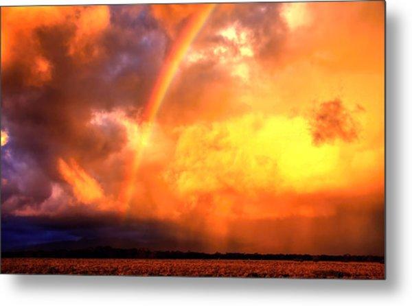 Storm Over The Flinders Ranges Metal Print