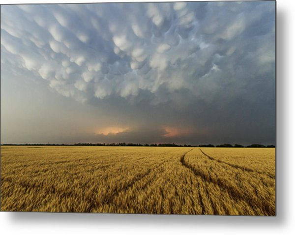 Storm Over Wheat Metal Print