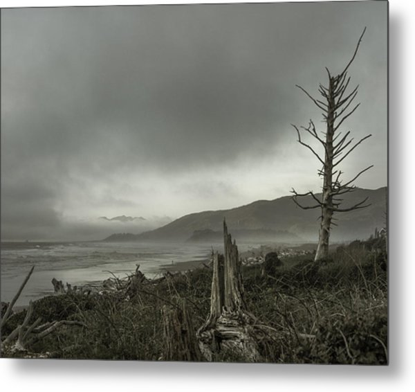 Stormy Oregon Coast Metal Print by Shawn St Peter