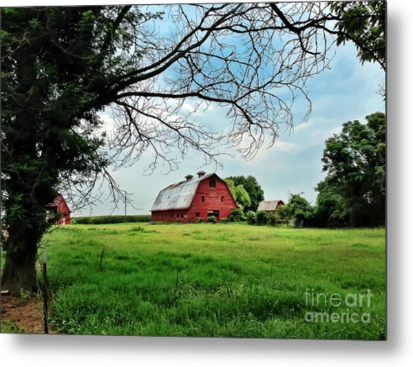 Stovall Farms In The Mississippi Delta Metal Print
