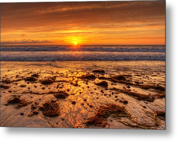 Stranded  Metal Print by Donna Pagakis