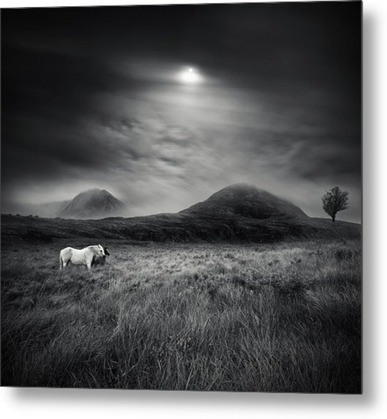 Strange Place To Be Metal Print by Martin Marcisovsky