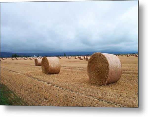 Straw For The Garden Maybe Metal Print
