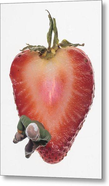 Strawberry Seat Metal Print