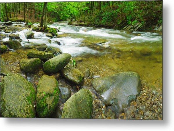 Stream Following Through A Forest Metal Print
