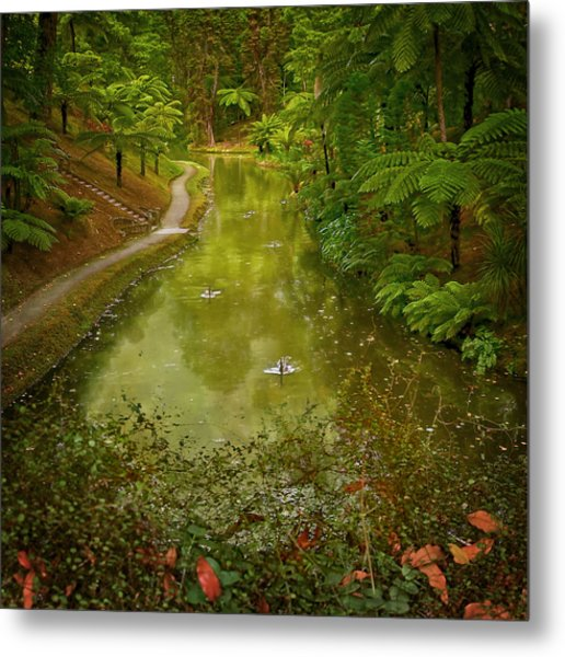Stream In Paradise Metal Print