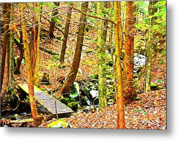 Stream On Appalachian Trail Metal Print