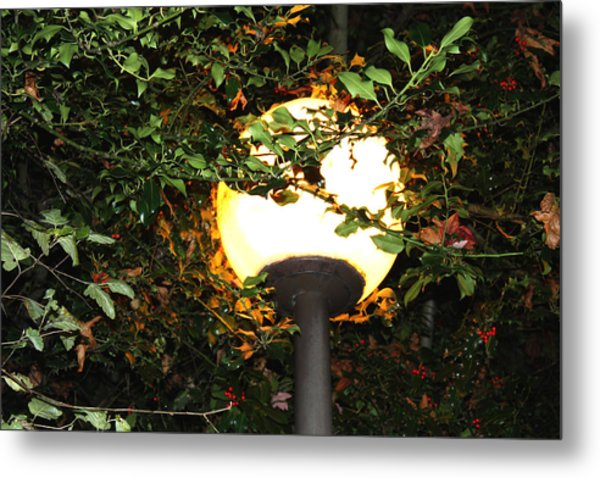 Streetlight Metal Print