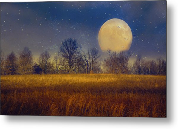 Struck By The Moon Metal Print
