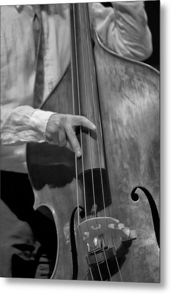 Strummin Metal Print by Sheryl Thomas
