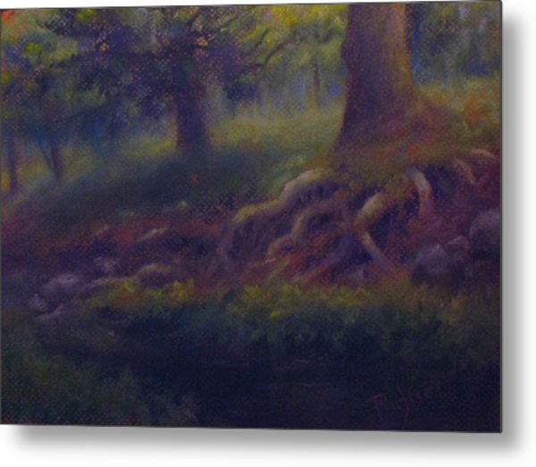 Study Of Sycamore Roots Metal Print