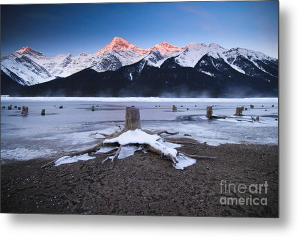 Stumps At Spray Lakes Metal Print by Ginevre Smith