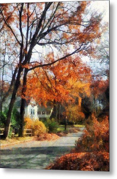 Suburban Street In Autumn Metal Print by Susan Savad