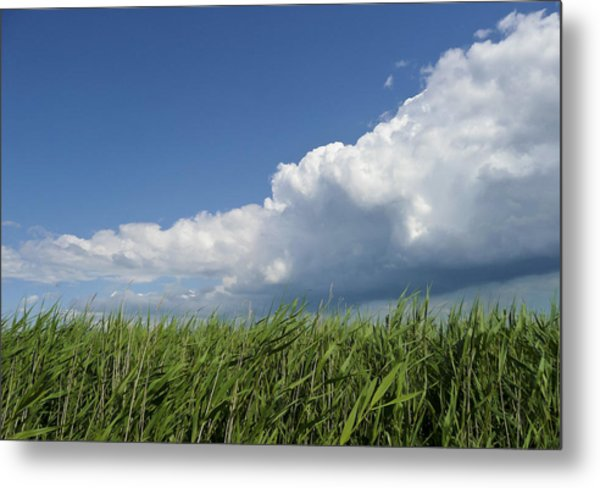 Suffolk Skies Metal Print