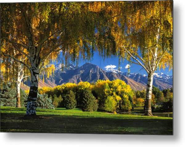 Sugarhouse Park Salt Lake City Ut Metal Print