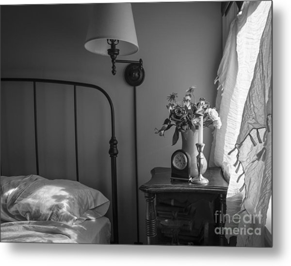 Summer Afternoon Nap Metal Print