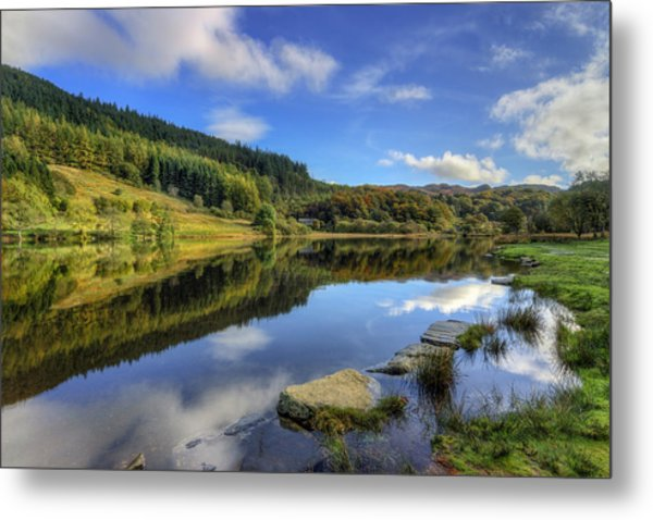 Summer At The Lake Metal Print