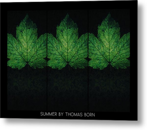 Summer By Thomas Born Metal Print