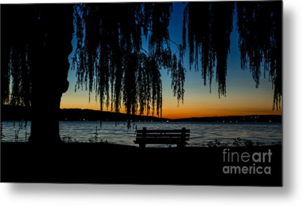 Summer Evening At Stewart Park Metal Print