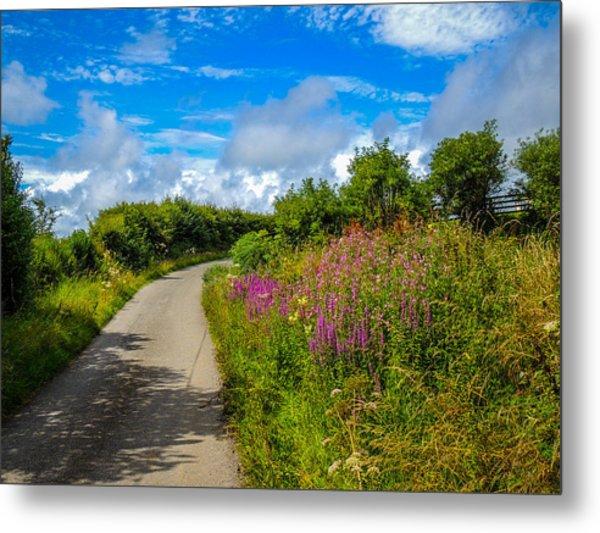 Summer Flowers On Irish Country Road Metal Print