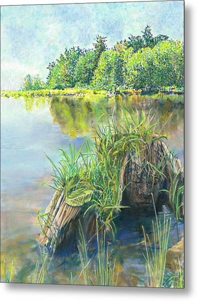 Summer Grasses Metal Print