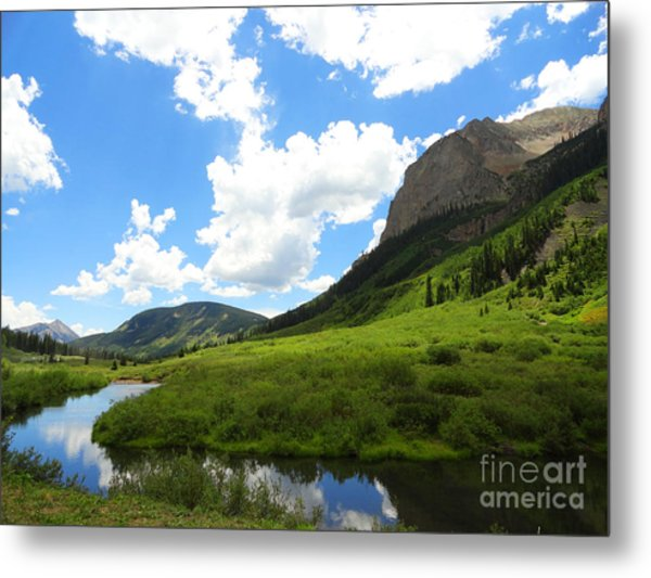 Summer In Crested Butte Metal Print